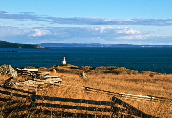 Cattle Point Lighthouse Mayas Images