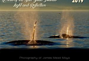 mayas-calendar-orcas2019